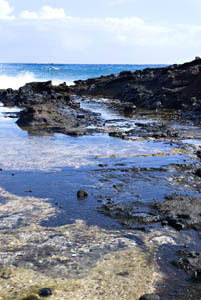 hawaii08_2522