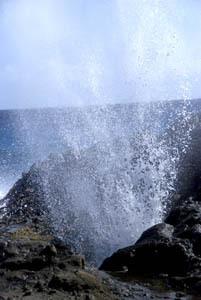 hawaii_2524